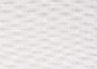 Color Net Blanco