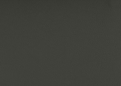 Color Grau