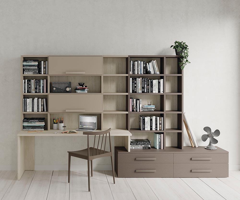Composición de estantería con escritorio y mueble bajo
